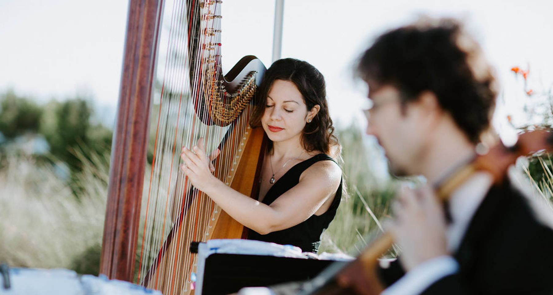 Strange Interlude: Autumn Musings on Harp and Cello