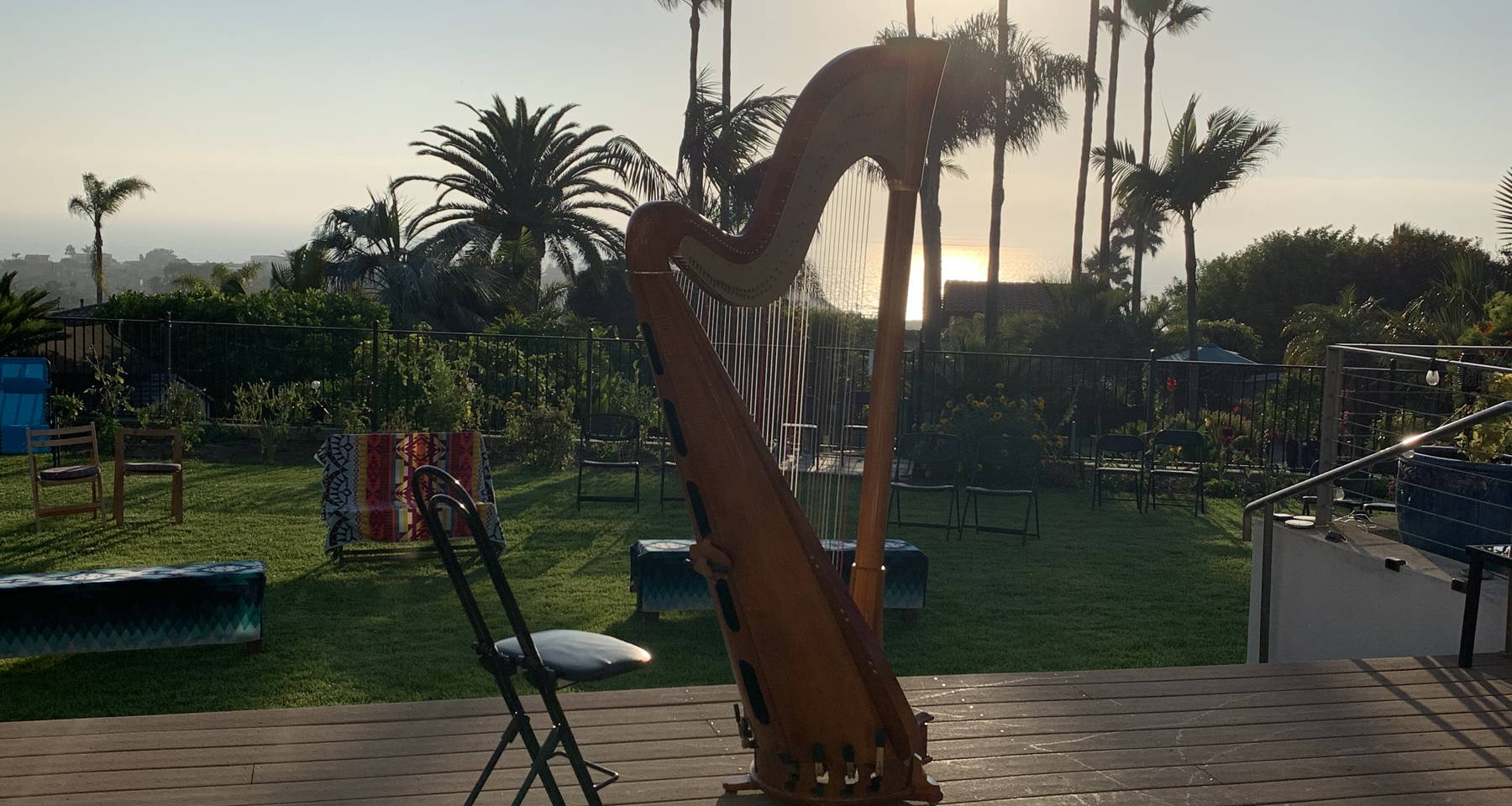 Cello and Violin: Afternoon Backyard Concert