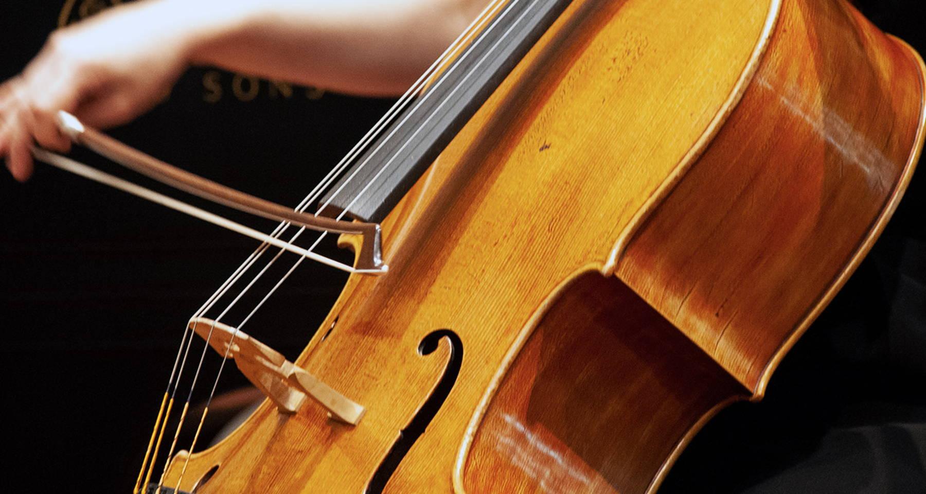 Palo Alto Backyard - String Quartet